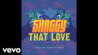 Shaggy That Love Audio