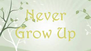 Taylor Swift-Never Grow Up Lyrics[on screen]