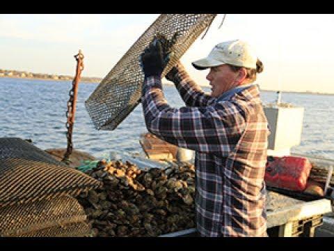 Local Life: East Hampton Town - #1 Mike Martinsen