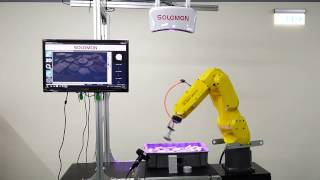 Pick &Place by Fanuc robot with 3D Vision Sensors
