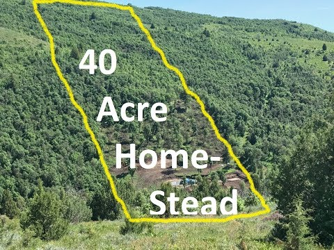 Off Grid Living: View From Above Our 40 Acre Homestead