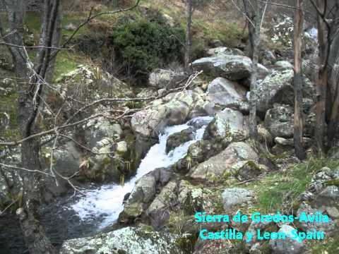 Sierra de Gredos Castilla y Leon Avila Spain naturaleza nature