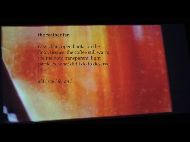 The Feather Fan, by Stella Pierides