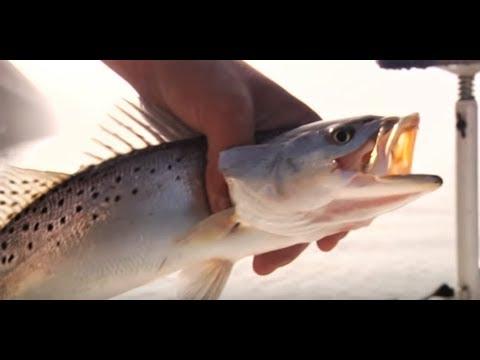 Lake Pontchartrain Monster Hunt - Louisiana - Sportsman TV