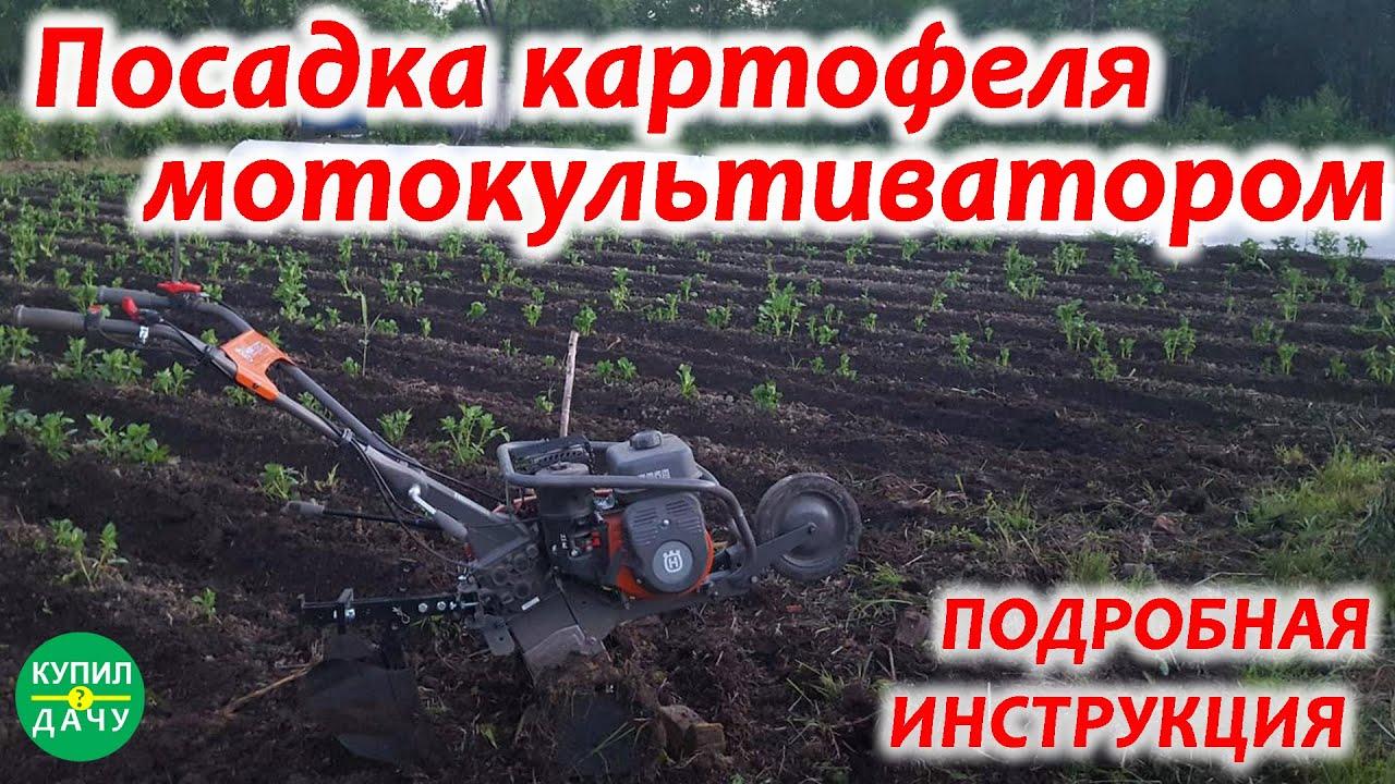 Посадка картофеля культиватором или мотоблоком (Husqvarna TF 230)