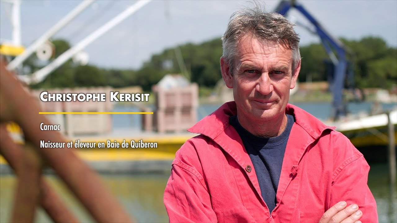 Les Gardiens de l'Huître Plate - Christophe Kerisit - Entretien des Bancs Naturels d'Huîtres Plates