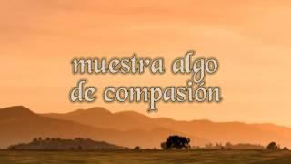 Shy - Sonata Arctica (traducida al español)