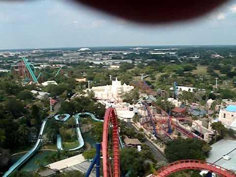 Sheikra Roller Coaster Busch Gardens Tampa