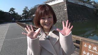 今回は、移住をテーマにした「特別編」としてタレントの中澤裕子(元モ...