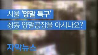[자막뉴스] 서울 '양말 특구' 창동 양말공장을 아시나…