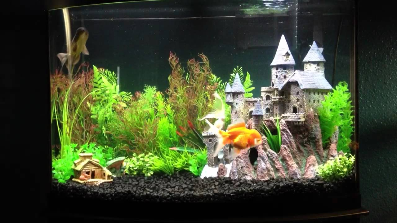harry potter fish tank decorations