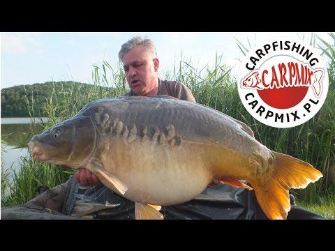 Hol karpia 30kg | CARPMIX.PL | Team Lastia