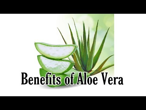 Benefits of Aloe Vera by Nutritionist and Natural Therapy