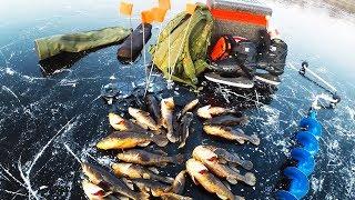 ЭТО НЕ РОТАНЫ А КАКИЕ ТО МОНСТРЫ Мой лучший первый лёд Зимняя рыбалка 2019 2020