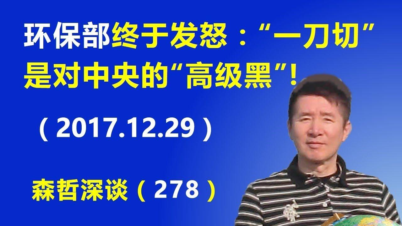 """环保部终于发怒:""""一刀切""""是对中央的""""高级黑""""!(2017.12.29)"""