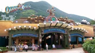 홍콩 오션파크 Ocean Park Hong Kong