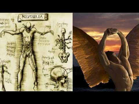 Der Untergang der Nephilim ➤ Das Alte Testament im Kontext