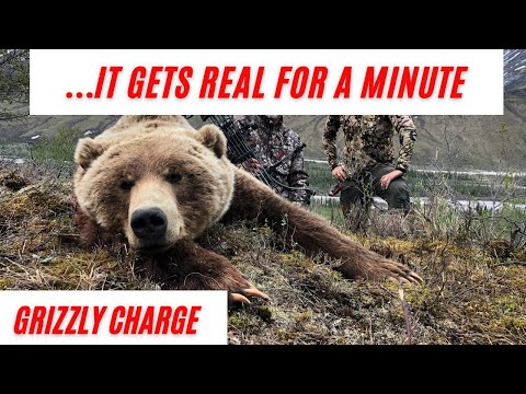 GRIZZLY CHARGE | BROWN BEAR CHARGE! | ALASKA GRIZZLY HUNT | ATO #12