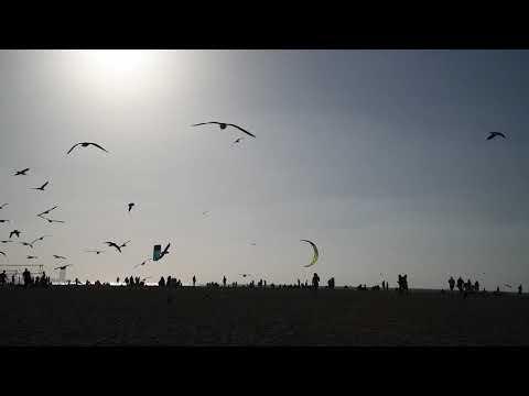 Kite beach, Dubai – United Arab Emirates