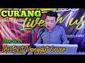Curang - The Best Dangdut Cover Jhonedy Bs Official | Arr Vaddero