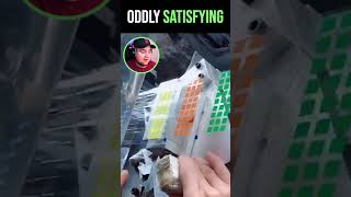 Oddly Satisfying Reaction Video For Sleep