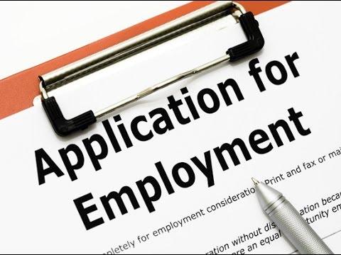 Pokemon reborn job applications