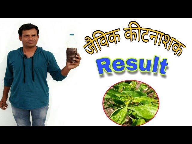 ?? ????? ???? ????? ?????? ?? ????? ??????? ?? ?????? | Results of Organic Pesticides