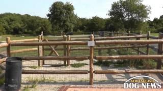 Ri Dog Park: South Kingstown Dog Park- South Kingstown, Rhode Island