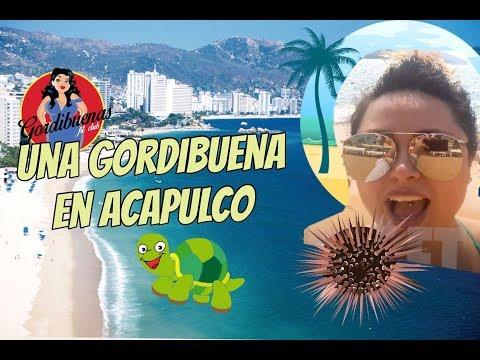 Una gordibuena en Acapulco (comiendo erizos, liberando tortugas y mas)
