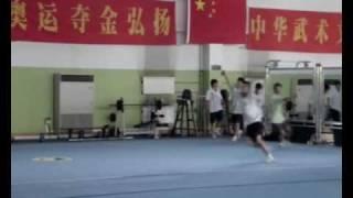 henan wushu team trailer 2007