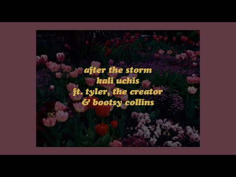 After The Storm - Kali Uchis ft. Tyler, The Creator & Bootsy Collins (lyrics)