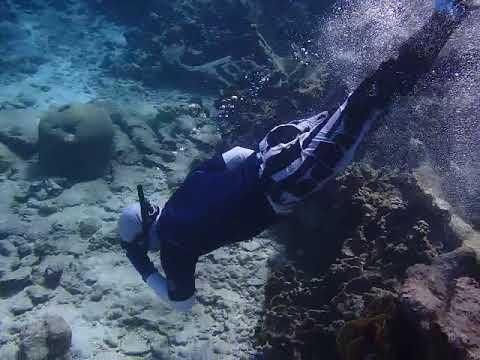 AK Amputee Shinfins Dive