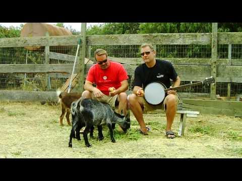 Goat Chat
