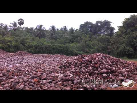 Coir Mat.com Presents: Coco Mat Production, From Coconut Husk to Coir Fiber