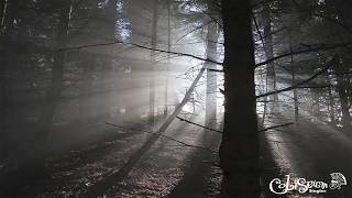 Das Licht -- Traumwelten (Original Mix)