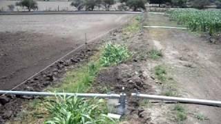 Sistema de Riego por Aspersion para Maiz  AGRO IRRIGACION DEL CENTRO