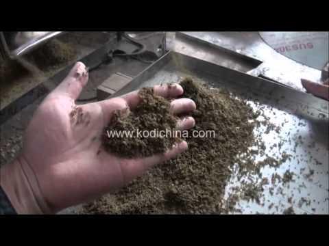 Eucheuma cottonii seaweed carrageenan coarse mill crushing hammer mill grinder