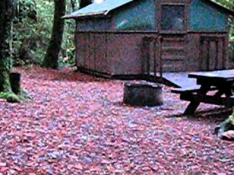 Tent Cabins Big Basin Redwood Forest