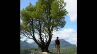 Mallorca - GR221 & Hiking