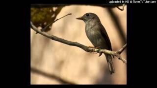 Download Hindi Video Songs - Nee-Thanae-En-Ponvasantham Mudhal-Murai