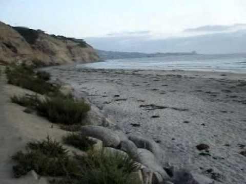 Nude Beach (Black Beach) in San Diego - YouTube