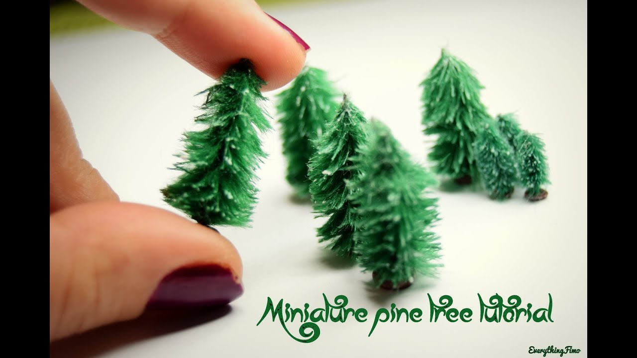 Live Small Christmas Trees