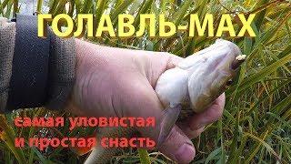 Ловля голавля на малых реках самой простой и уловистой снастью