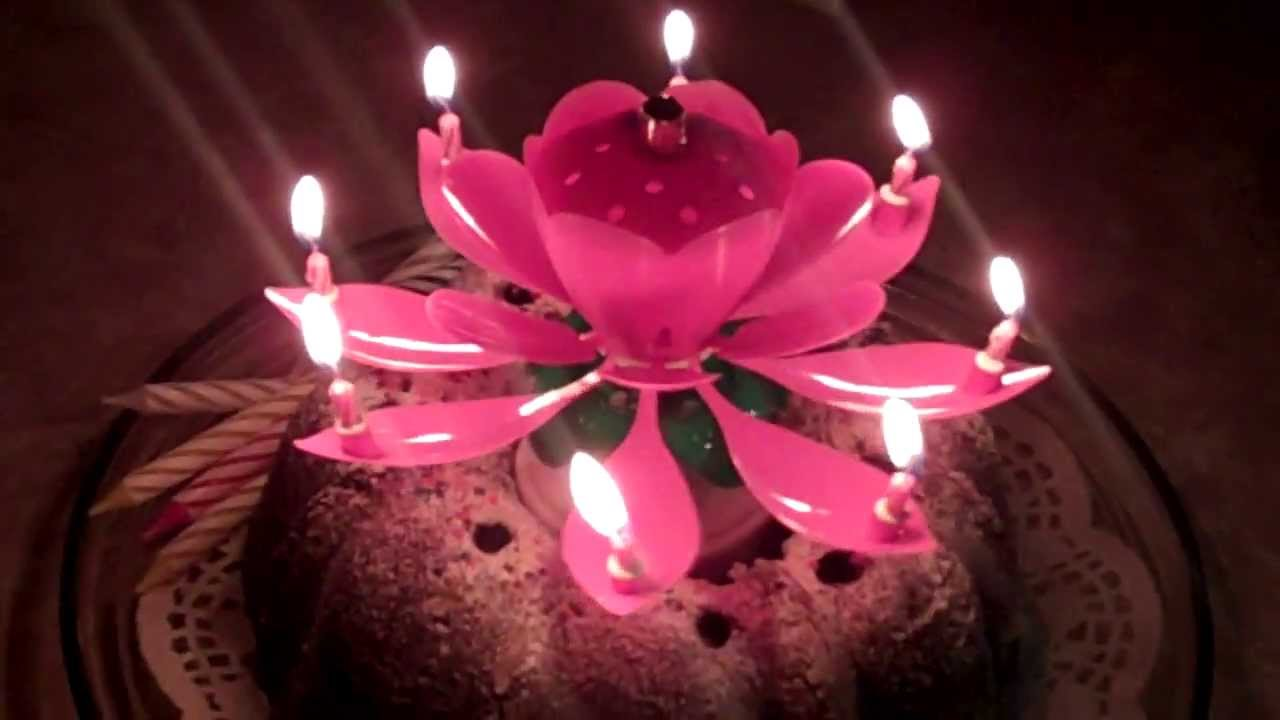 Amazing Birthday Candles Flower Image Collections Flower Wallpaper Hd