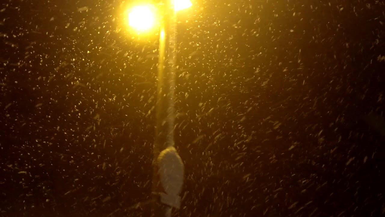 Hacía mucho tiempo que no se veían nevadas tan copiosas en el Tibidabo. Y menos que lo hiciera 4 días entre Febrero y Marzo.