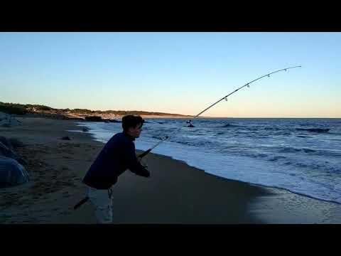 Pescando en punta negra 2017