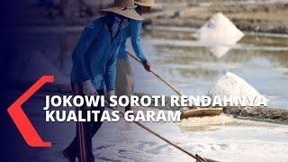 Download Soroti Kualitas Garam Rakyat, Jokowi: Harus Ada Pembenahan Rantai Pasokan Garam