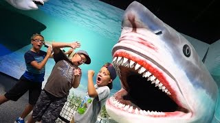 GIANT DINOSAUR SHARK Museum Tour!