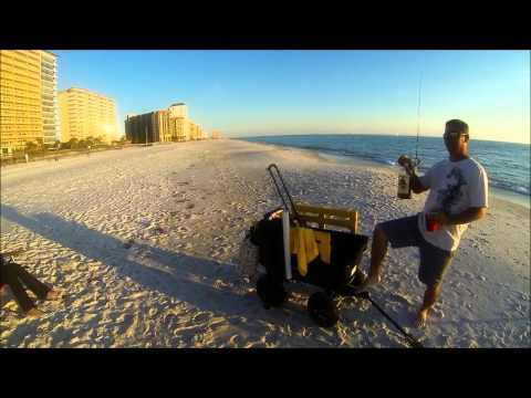 Surf fishing for big whiting and pompano doovi for Surf fishing panama city beach