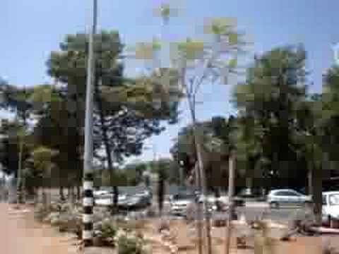 Biking around Givat Shmuel